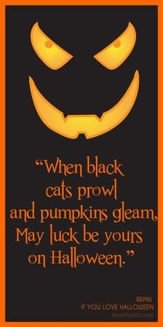 when-black-cats-prowl-and-pumpkins-gleam-may-luck-be-yours-on-halloween