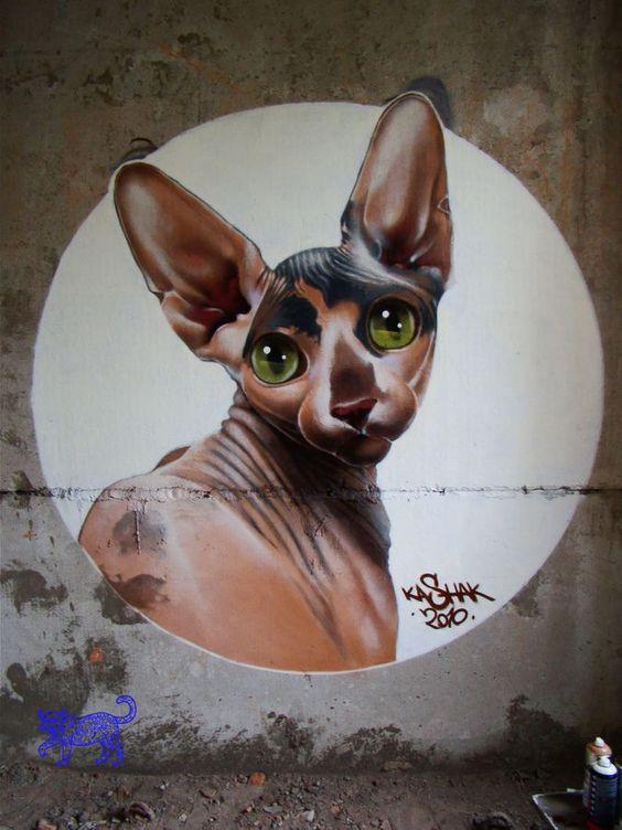 KASHAK street art cats